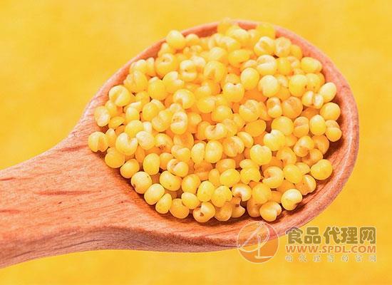 谷绿农品黄小米多少钱,享受健康早餐粥