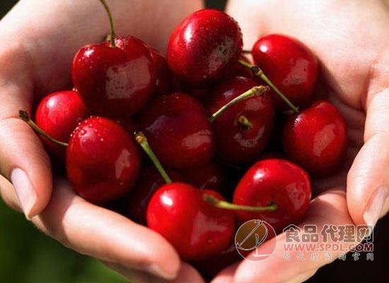车厘子是樱桃吗,车厘子和樱桃有何区别