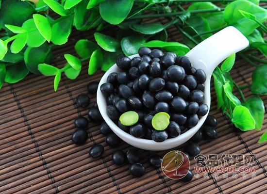 硃碌科黑豆多少錢,給你天然營養與美味