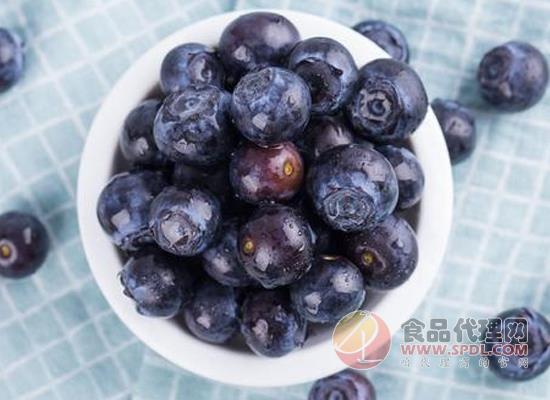 黑枸杞與藍莓的區別在哪里,看行家怎么說