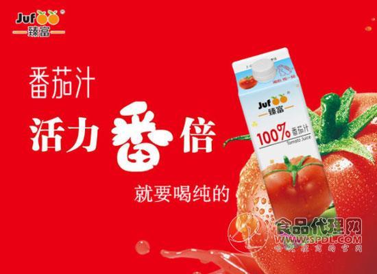 臻富番茄汁多少錢,好口感源于好原料