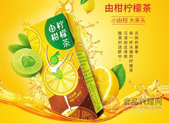 東鵬由柑檸檬茶多少錢,冰鎮飲用口感更佳