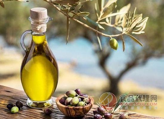 食用橄榄油的作用有哪些,厨房必备食用油
