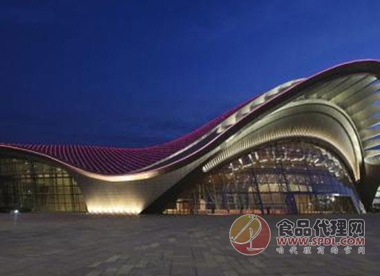 合肥滨湖国际会展中心怎么走