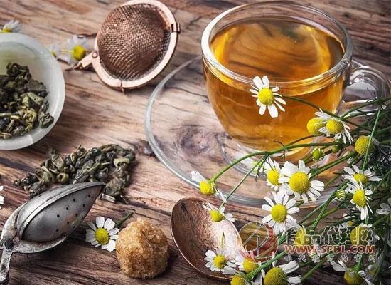 蒲公英茶的功效與作用,全面了解是關鍵