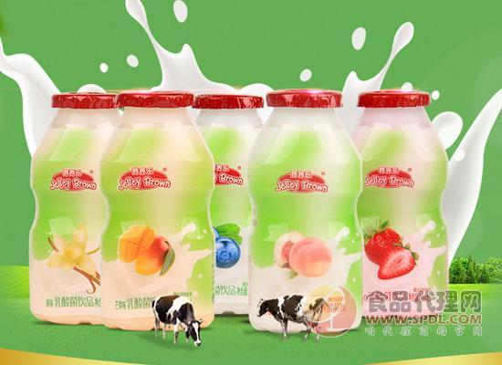 界界乐乳酸菌饮料价格是多少,选用新西兰进口奶源