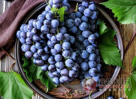 夏天吃什么水果比较好,为您推荐三种营养水果