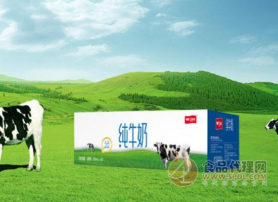 卫岗牛奶价格是多少,只为给你带来好营养