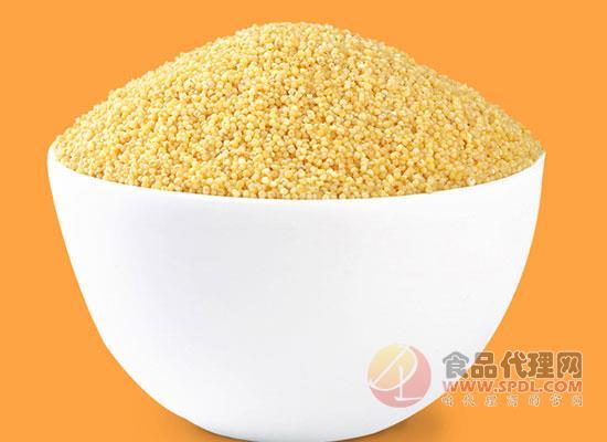 十月稻田小米粥好在哪里,守護全家人舌尖上的安全