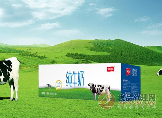 卫岗牛奶价格是多少,选对牛奶不将就