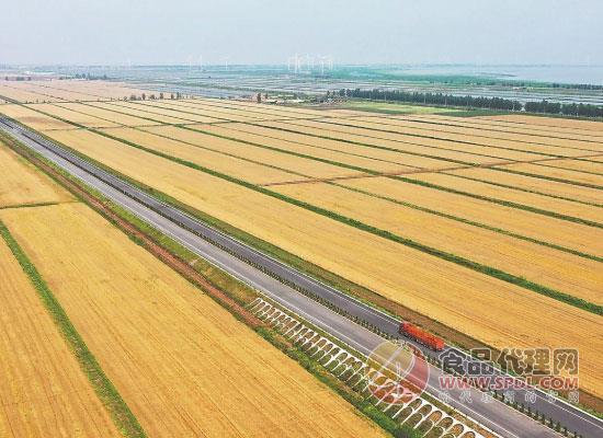 河北省关于开展2020年粮食质量安全监测工作的通知