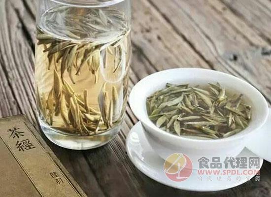 什么是白茶,喝白茶有什么禁忌