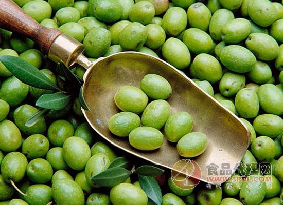 橄欖油的功效與作用,它還有什么妙用