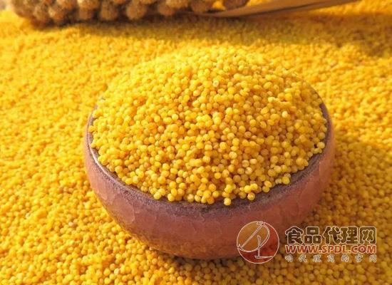 黄小米哪些人不能吃,这两类人尽量不要吃