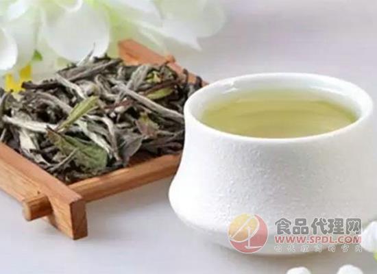 孕妇能喝白茶吗,喝白茶有什么好处