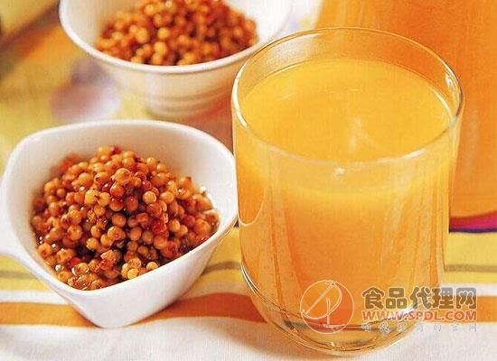 自己做沙棘汁怎么保存,如何自制沙棘汁