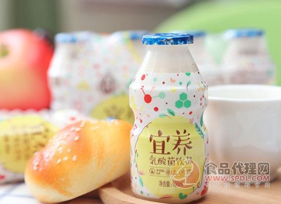 宜養經典乳酸菌飲品怎么樣,喝乳酸菌有什么好處