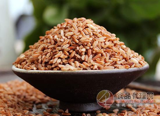 滇园哈尼梯田红软米多少钱,嚼劲十足不粘牙