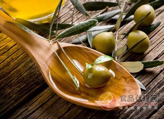 橄欖油和植物油的區別,橄欖油有什么妙用