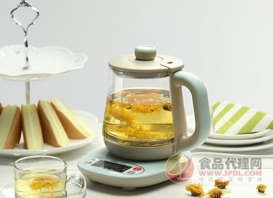 养生壶和电热水壶的区别,三方面各不相同