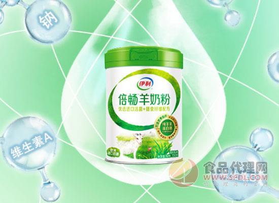 伊利倍畅羊奶粉,细节决定品质的高端羊奶粉