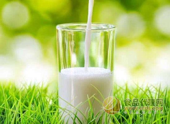 进口牛奶的功效与作用,如何挑选进口牛奶