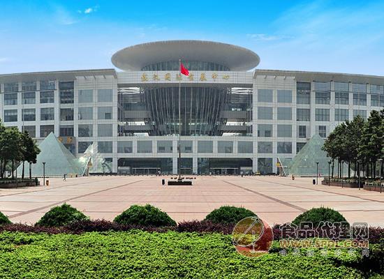 2021第十三屆中部武漢糖酒食品交易會參觀觀眾