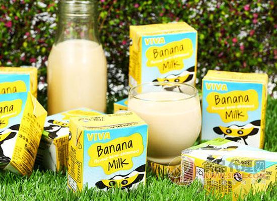 韋沃香蕉牛奶怎么樣,營養美味的雙重口感體驗