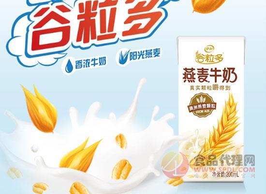 伊利谷粒多燕麦牛奶,唤醒活力满满每一天
