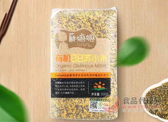 苏嫲嫲有机BB苏小米多少钱,自然农耕种植