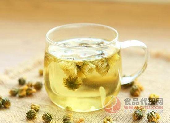 菊花茶里可以放红枣吗,饮用菊花茶时需要注意什么