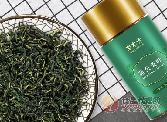 草木方蒲公英茶價格,一杯熱水就能喝到的養生茶