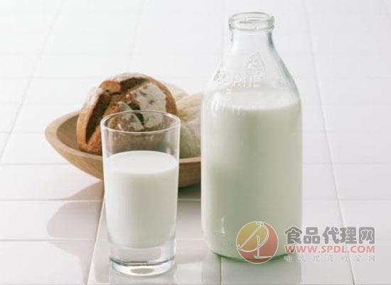 低溫奶能減肥嗎,如何分辨低溫奶的好壞