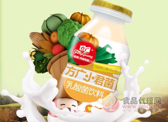 方广小君菌乳酸菌饮料多少钱,畅享酸甜滋味