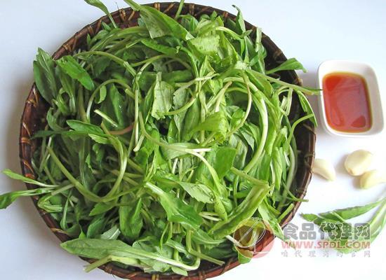 贵州省市场监发布食用野菜的提示