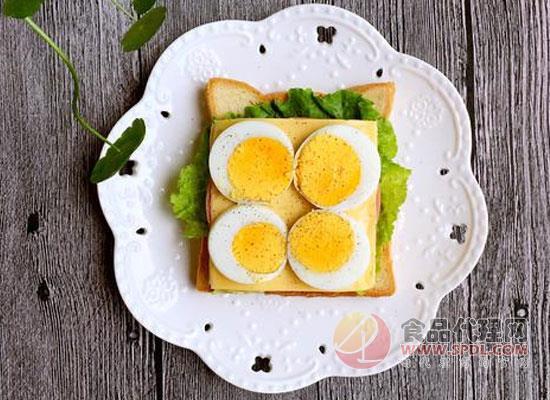 雞蛋紅線預警,新西蘭雞蛋產量預計將下降