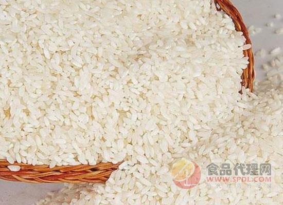 如何选到优质的大米,原来大米也有大学问