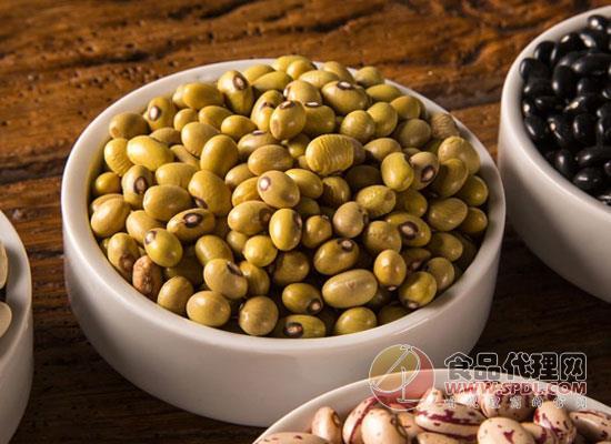 日常生活中常见的豆类有那些,快来一起认识一下