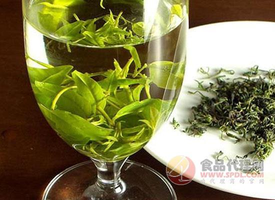 苦丁茶品種有哪些,饮用苦丁茶有什麼註意事项