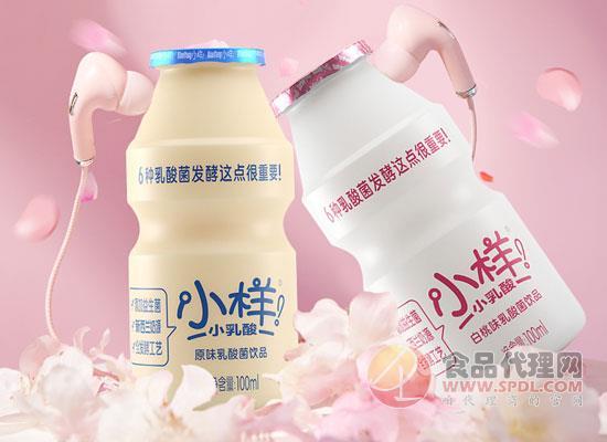 小樣乳酸菌飲品怎么樣,6種乳酸菌發酵,這點很重要!