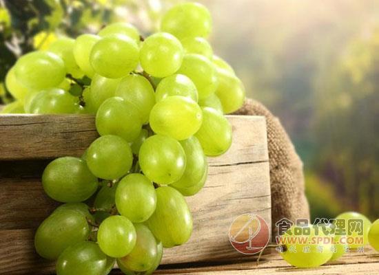 葡萄放冷凍還是冷藏,葡萄能放多久