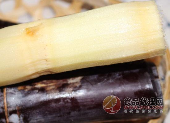 甘蔗一次吃多少合适,吃甘蔗为什么会喉咙痛