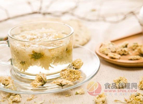 菊花茶可以隔夜喝吗,菊花茶可以冷泡吗