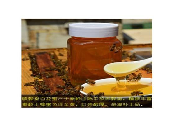 龙田跃文给你天然的野生蜂蜜