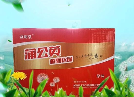 宝益生物科技专业制作茶饮料,蒲公英饮料让你和上火说再见