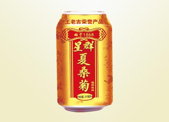 星群夏桑菊植物饮料,对口更对胃