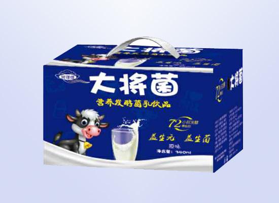 大将菌营养发酵菌乳饮品营养与美味并存