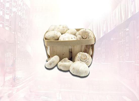 为确保双孢菇品质,集盛食品开辟直达配送路线