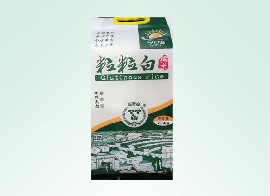粒粒白糯米彰显鱼米之乡本色,香糯米更有滋味