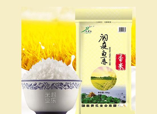 兴君乐香米颗粒饱满味更香,为你带去香味浓郁的高品质大米